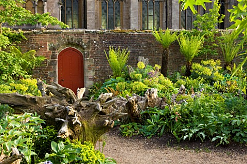 ARUNDEL_CASTLE_GARDENS_WEST_SUSSEX_THE_WALLED_GARDENS_THE_STUMPERY__