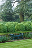 ROCKCLIFFE HOUSE, GLOUCESTERSHIRE: LAWN AND WOODEN SEAT / BENCH WITH CLIPPED TOPIARY BALLS AND CEDAR OF LEBANON - GREEN, COUNTRY GARDEN, SUMMER, MIST, FOG, ROMANTIC