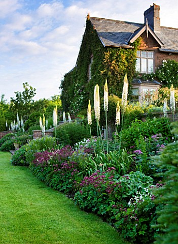 BROCKHAMPTON_COTTAGE_HEREFORDSHIRE_BORDER_BY_LAWN_WITH_VICTORIAN_HOUSE__CRIMSON_ASTRANTIA_AND_WANDS_