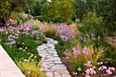 CORFU, GREECE - THE KASSIOPIA ESTATE: THE GARDEN WITH STONE PATH AND PINK FLOWERS OF TULBAGHIA VIOLACEA