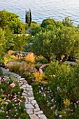 CORFU, GREECE - THE KASSIOPIA ESTATE. VIEW FROM THE TERRACE WITH OLIVE AND CYPRESS TREES AND WINDING STONE PATH WITH TULBAGHIA VIOLACEA AND STIPA TENUISSIMA