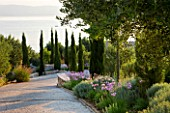 CORFU, GREECE - THE KASSIOPIA ESTATE. THE DRIVEWAY LEADING TO THE VILLA WITH CYPRESS AND OLIVE TREES UNDERPLANTED WITH TULBAGHIA VIOLACEA. HOT, DRY PLANTING SCHEME.