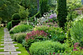 ROCKCLIFFE HOUSE, GLOUCESTERSHIRE: HERBACEOUS BORDER BESIDE PATH WITH ASTRANTIAS, ROSES, PEONIES, YEW, GERANIUMS AND FOXGLOVES. SUMMER, COUNTRY GARDEN