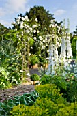 BIRTSMORTON COURT, WORCESTERSHIRE: WHITE GARDEN - LEAD POOL / POND WITH CHERUB FOUNTAIN, WHITE DELPHINIUMS AND METAL ARCH WITH ROSE SNOWDRIFT. COUNTRY GARDEN, CLASSIC, ENGLISH