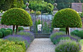 POULTON HOUSE GARDEN, WILTSHIRE: LAWN, GRAVEL PATH -  CLIPPED TOPIARY, DOMED PRUNUS LUSITANICA WITH LAVENDER HIDCOTE LEADING TO WALLED GARDEN -  HERACLITUS STATUE BY EMILY YOUNG