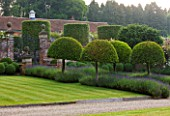POULTON HOUSE GARDEN, WILTSHIRE: LAWN, GRAVEL PATH -  CLIPPED TOPIARY, DOMED PRUNUS LUSITANICA WITH LAVENDER HIDCOTE LEADING TO WALLED GARDEN - GREEN, COUNTRY GARDEN, SUMMER