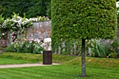 POULTON HOUSE GARDEN, WILTSHIRE: WALLED GARDEN IN SUMMER WITH ROSES, CLIPPED QUERCUS ILEX TREE AND STONE SCULPTURE ON GRAVEL PATH - MARBLE SCULPTURE - HERACLITUS - BY EMILY YOUNG