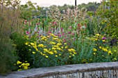 HORATIOS GARDEN  SALISBURY HOSPITAL  WILTSHIRE - DESIGNER CLEEVE WEST - LIMESTONE WALL WITH YELLOW ACHILLEA MOONSHINE  KNAUTIA MACEDONICA AND FENNEL