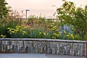 HORATIOS GARDEN  SALISBURY HOSPITAL  WILTSHIRE - DESIGNER CLEEVE WEST - DAWN LIGHT - LIMESTONE WALL WITH YELLOW ACHILLEA MOONSHINE  KNAUTIA MACEDONICA  AND STACHYS BYZANTINA