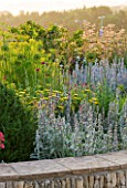 HORATIOS GARDEN  SALISBURY HOSPITAL  WILTSHIRE - DESIGNER CLEEVE WEST - LIMESTONE WALL WITH BORDER OF STACHYS BYZANTINA SILVER CARPET  FENNEL  ACHILLEA MOONSHINE AND BOX