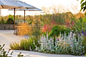 HORATIOS GARDEN  SALISBURY HOSPITAL  WILTSHIRE  - DESIGNER CLEEVE WEST - BORDERS OF STACHYS BYZANTINA SILVER CARPET  STIPA GIGANTEA AND CENTRANTHUS RUBER