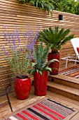 BEN DE LISI HOUSE AND GARDEN, LONDON: BRAZILIAN HARDWOOD DECKING WITH RED CONTAINERS PLANTED WITH AGAVE, PEROVSKIA AND A FERN, DECK, DECKING, FENCE, FENCING, PATIO, SUMMER, CARPET