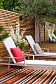 BEN DE LISI HOUSE AND GARDEN  LONDON: BRAZILIAN HARDWOOD DECKING  CARPETS  DECKCHAIRS AND CUSHIONS IN THE GARDEN