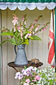 COMMON FARM FLOWERS. SOMERSET, SUMMER - GREEN SHED WITH TABLE AND METAL BUCKETS WITH DIGITALIS SUTTONS APRICOT AND ENGLISH FLAG - FLOWER ARRANGING, ARRANGEMENT