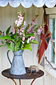 COMMON FARM FLOWERS. SOMERSET, SUMMER - SHED WITH TABLE AND METAL BUCKETS WITH DIGITALIS SUTTONS APRICOT AND ENGLISH FLAG - FLOWER ARRANGING, ARRANGEMENT