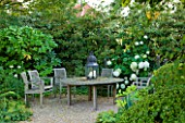 WOOLSTONE MILL HOUSE, OXFORDSHIRE: GRAVEL COURTYARD WITH SEATING AREA AND HYDRANGEA ANNABELLE AND FATSIA JAPONICA. WHITE-THEMED PLANTS. CALM, RELAXING. A PLACE TO SIT.