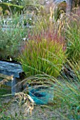 MARCHANTS HARDY PLANTS, EAST SUSSEX: COPPER CONTAINER PLANTED WITH GRASS - PANICUM VIRGATUM SHENANDOAH. GRAVEL, BENCH, GRASSES, COUNTRY, GARDEN