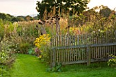 MARCHANTS HARDY PLANTS, EAST SUSSEX: GRASS PATH, BORDER WITH RUDBECKIAS AND CARDOONS, WAVY CHESTNUT FENCE. FENCING, BOUNDARY, BOUNDARIES, WOOD, WOODEN, COUNRTRY, GARDEN