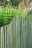 MARCHANTS HARDY PLANTS, EAST SUSSEX: WAVY CHESTNUT WOODEN FENCE. FENCING, WOOD, BOUNDARY, ENGLISH, COUNTRY, GARDEN, AUTUMN