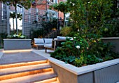 PRIVATE GARDEN LONDON: DESIGNER STEPHEN WOODHAMS - TOWN GARDEN - BACK GARDEN STEPS WITH LIGHTING UP TO RAISED BED PLANTED WITH PLATINUS X ACERIFOLIA. FORMAL, CITY GARDEN, TRELLIS