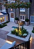 PRIVATE GARDEN LONDON: DESIGNER STEPHEN WOODHAMS - TOWN GARDEN - BACK GARDEN - CONTAINERS, RAISED BED WITH PLATANUS X ACERIFOLIA. FORMAL, CITY GARDEN, LIGHTING, LIT, CONTEMPORARY