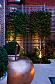 PRIVATE GARDEN LONDON: DESIGNER STEPHEN WOODHAMS - TOWN GARDEN - BASEMENT - SCULPTURE POMME BY CLAUDE LALANNE, TRELLIS. PLEACHED MAGNOLIA X LOEBNERI MERRILL, LIGHTING, LIT UP
