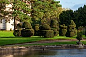 THORP PERROW ARBORETUM, YORKSHIRE: VIEW ACROSS LAKE IN AUTUMN TO LAWN AND CLIPPED TOPIARY YEW - FORMAL, CLASSIC COUNTRY GARDEN, FALL