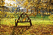 HOLKER HALL  CUMBRIA: WOODEN SEAT LOOKS OUT TO THE STONE CIRCLE  AUTUMN