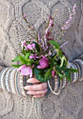 SIR HAROLD HILLIER GARDENS, HAMPSHIRE: THE WINTER GARDEN - STYLING BY JACKY HOBBS - WOMAN HOLDING SCENTED, FRAGRANT PLANTS WINTER BOUQUET - HELLEBORUS HILLIER HYBRID, HAMAMELIS AMETHYST, ERICA X DARLEYENSIS GHOST HILLS, CYCLAMEN COUM AND DAPHNE BHOLUA JACQUELINE POSTILL