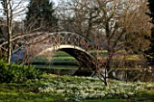 CHIPPENHAM PARK, CAMBRIDGESHIRE: SHEETS OF SNOWDROPS BESIDE THE LAKE WITH THE BRIDGE IN THE BACKGROUND  -  WINTER