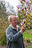 SPINNERS GARDEN AND NURSERY, HAMPSHIRE: ANDREW ROBERTS - OWNER OF SPINNERS NURSERY LOOKING AT MAGNOLIA PINKIE