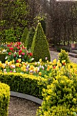 EAST RUSTON OLD VICARAGE GARDEN, NORFOLK: THE DUTCH GARDEN PLANTED WITH TULIPS IN SPRING. MAY, FLOWERS, HOT, BRIGHT, GRAVEL, PATIO, CLIPPED BOX, TRIMMED, TOPIARY