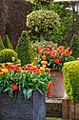 EAST RUSTON OLD VICARAGE GARDEN, NORFOLK: TERRACOTTA AND LEAD CONTAINERS IN THE DUTCH GARDEN - ORANGE TULIPS. SPRING. MAY, FLOWERS, HOT, BRIGHT, GRAVEL, TERRACE, PATIO