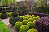 EAST RUSTON OLD VICARAGE GARDEN, NORFOLK: CLIPPED TOPIARY YEW AND BOX BALLS WITH BERBERIS HEDGE - HEDGING, GREEN, TRIMMED, SHRUB, EVERGREEN, SHAPED, SHAPE, FORMAL