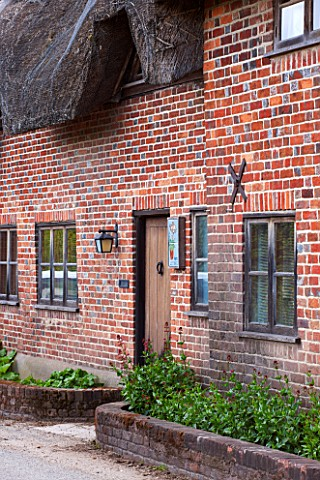 POPS_PLANTS_AURICULAS_HAMPSHIRE_THE_FRONT_DOOR_OF_THE_THATCHED_COTTAGE