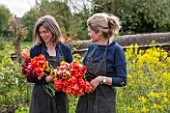 THE LAND GARDENERS, WARDINGTON MANOR, OXFORDSHIRE: BRIDGET ELWORTHY AND HENRIETTA COURTAULD HOLDING CUT TULIPS FOR FLOWER ARRANGING. CUT FLOWER, CUTTING GARDEN, WALLED GARDEN