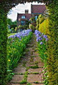 WARDINGTON MANOR, OXFORDSHIRE: THE LAND GARDENERS: VIEW THROUGH HEDGE IN SPRING WITH PATH LINED WITH BLUE IRIS - FRAME, FRAMING, PATH, STONE, HOUSE, COUNTRY GARDEN