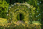 LITTLE MYNTHURST FARM, SURREY: PATH THROUGH ARCH OF ROSES. PERGOLA, ARCHWAY, VIEW, VISTA, FRAME, ROSE, ROSA, COUNTRY, GARDEN, ENGLISH