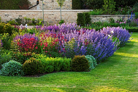 PRIVATE_GARDEN_GLOUCESTERSHIRE__DESIGNER_ANGEL_COLLINS__BORDER_BY_LAWN__SALVIA_MAINACHT_VERONICASTRU