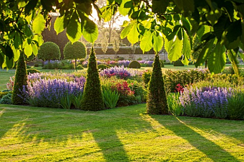 PRIVATE_GARDEN_GLOUCESTERSHIRE__DESIGNER_ANGEL_COLLINS__BORDER_BY_LAWN__YEW_SALVIA_MAINACHT_VERONICA