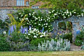 BROUGHTON CASTLE, OXFORDSHIRE: BORDER BESIDE THE WALLED GARDEN WITH ROSES, DELPHINIUMS, PHLOMIS RUSSELIANA AND STCAHYS BYZANTINA  - SUMMER, JUNE, FLOWERS