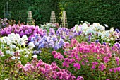 GARDENING WHICH ? TRIAL GROUND - BORDER OF DIFFERENT COLOURED PHLOX