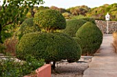 JONATHAN BAILLIE GARDEN, ALAIOR, MENORCA: CLIPPED TOPIARY OLIVE TREES WITH VIEW TO WHITE DOVECOTE. MEDITERRANEAN