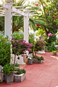 JONATHAN BAILLIE GARDEN, ALAIOR, MENORCA: PATIO WITH RED FLOOR, WHITE PAINTED PERGOLA WITH RED FLOOR ON PATIO, BOUGAINVILLEA IN RAISED BEDS