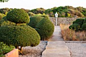 JONATHAN BAILLIE GARDEN, ALAIOR, MENORCA: CLIPPED TOPIARY OLIVES WITH PATH LEADING TO WHITE PAINTED DOVECOTE IN THE MAIN GARDEN