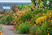WEST DEAN GARDENS, WEST SUSSEX: LATE SUMMER BORDERS IN THE WALLED VEGETABLE GARDEN - ORANGE THEMED BORDER - HOT, WARM, FLOWER, FLOWER BEDS