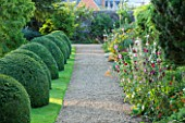 LAMPORT HALL, NORTHAMPTONSHIRE: CLIPPED BOX DOMES WITH GRAVEL PATH AND BORDERS BURSTING WITH HOLLYHOCKS AND LILIUM HENRYI - FORMAL, LAWN, CLASSIC COUNTRY HOUSE, FLOWERS, FLOWERING