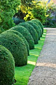 LAMPORT HALL, NORTHAMPTONSHIRE: CLIPPED BOX DOMES WITH GRAVEL PATH AND LAWN - FORMAL, CLASSIC COUNTRY HOUS, TOPIARY