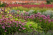 LAMPORT HALL, NORTHAMPTONSHIRE: BORDER IN THE WALLED KITCHEN GARDEN - CUTTING GARDEN WITH ECHINACEA, JOE PYE WEED - EUPATORIUM AND HEMEROCALLIS - FLOWERS, AUGUST, SUMMER