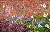 LAMPORT HALL, NORTHAMPTONSHIRE: BORDER IN THE WALLED KITCHEN GARDEN - CUTTING GARDEN WITH HOLLYHOCKS, AGAPANTHUS AND  JOE PYE WEED - FLOWERS, AUGUST, SUMMER